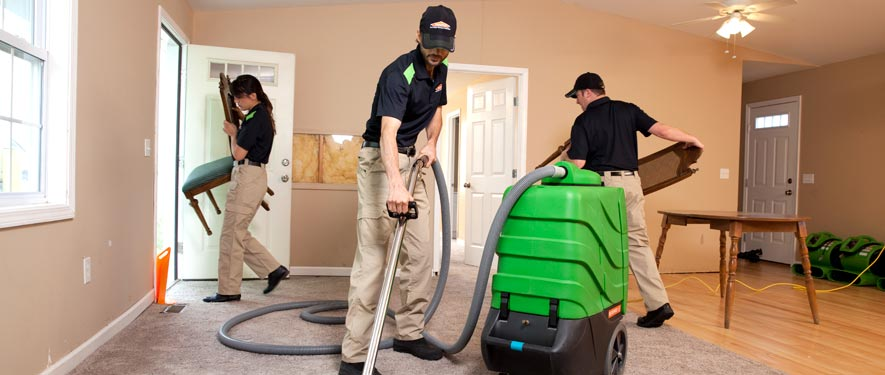 Bath, MI cleaning services